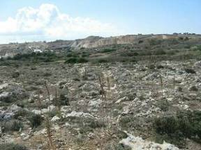 Clapham_junction cart ruts (Malta)